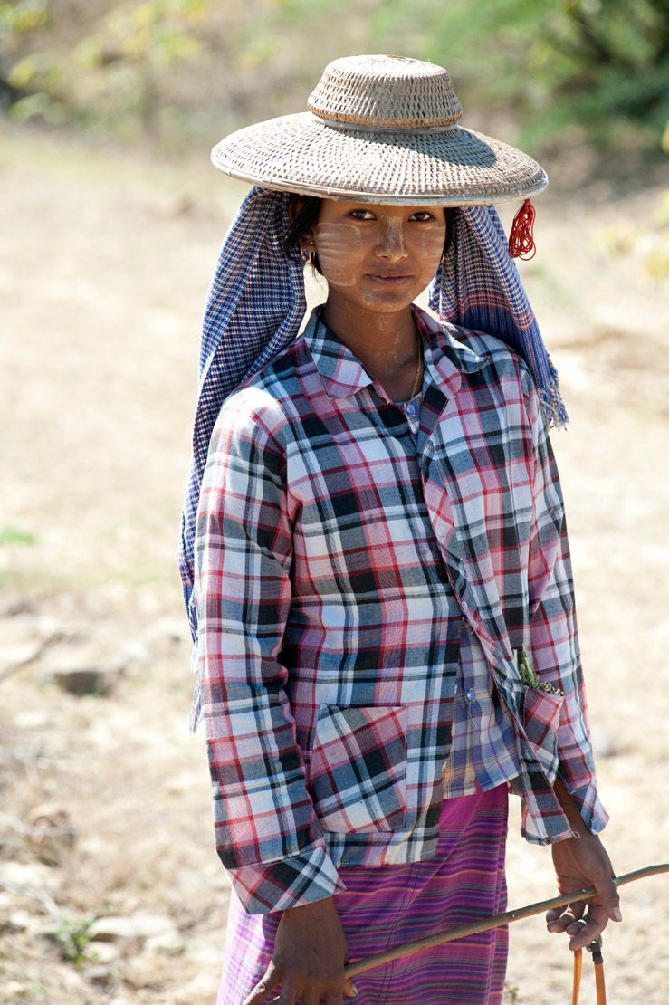 Young woman, shepherdess, in the rural Monywa District farmland, Sagaing Division.