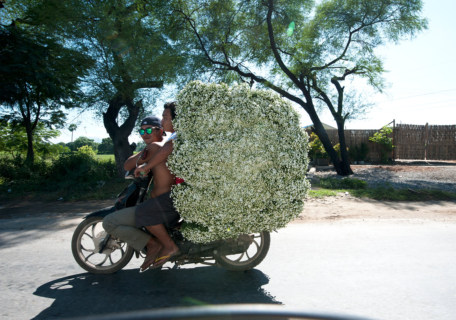 Two young men on a motorbike carrying a very large load of bunched flowers for sale in Ptin Oo Lwyn town, Mandalay, Myanmar.