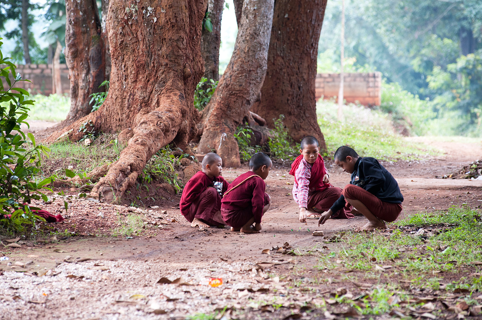 Young monks in red robes playing marbles amongst the trees beside Lonyon monastery, near Hsipaw, Shan state, Myanmar.